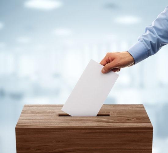 idą wybory…