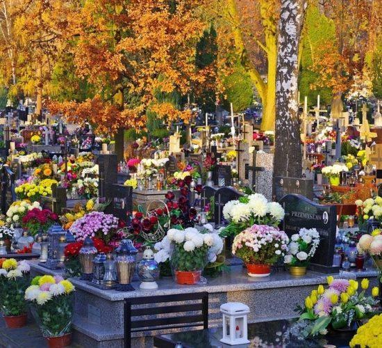 Elektroniczny plan naszego parafialnego cmentarza (spacer wirtualny po cmentarzu i krypcie pod kościołem)